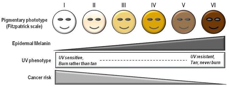 escala de pele fitzpatrick