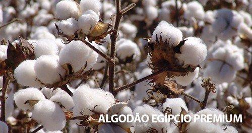 21 05 31 banner blog camiseta de algodao com protecao uv extreme uv 2