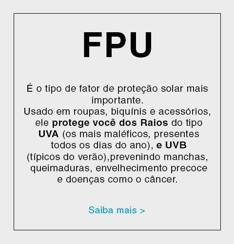 Descrição do que é FPU
